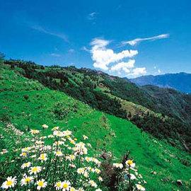 【清境】御花園景觀山莊 - 蜜月雙人房 + 小瑞士入園證  - (一泊二食)