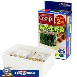 ~Ego Pet~ CattyMan 貓生野菜 2回份 ^~ 自己種的貓草^^.^^
