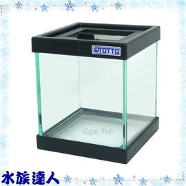 【水族達人】台灣OTTO奧圖《14*14*16.5cm 爬蟲缸》爬蟲箱