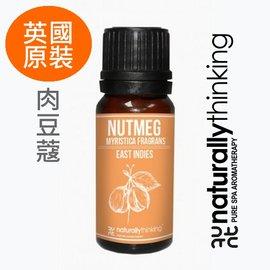 NT 肉豆蔻純精油 10ml~Nutmeg~英國