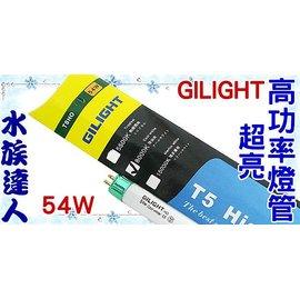 ~水族 ~~T5燈管~GILIGHT~T5HO超亮高功率燈管.冷白光^(8000K^)54