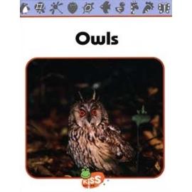 ~語言學習~自然學英文 ~ Owls