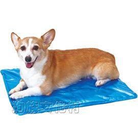 ~ PETIO 2014 款.冰晶軟冰涼墊~L號 中大型犬或多隻小型犬共用 ~夏天降溫 冰