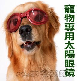 ~Dog Goggles酷炫抗UV防風寵物 墨鏡~中大型犬 ~吸睛指數百分百