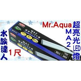 ~水族 ~水族先生Mr.Aqua~MA2超亮光LED燈1尺.D~MR~321~安規