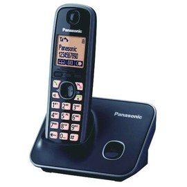 Panasonic 國際牌 DECT 式無線電話 KX~TG6611TW