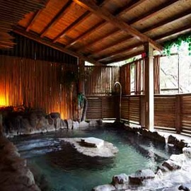 【谷關】龍谷觀光飯店 - 雙人 - NEC風呂男女裸湯