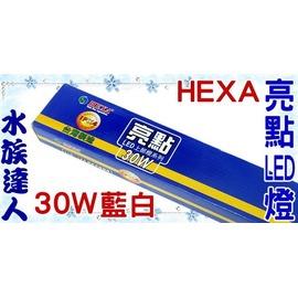 【水族達人】海薩 HEXA《S-1200亮點LED上部燈30W(3W*10)4尺/藍白》跨燈 116~124cm魚缸適用