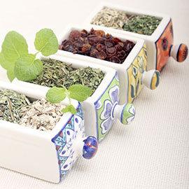安敏寶貝茶 P er Tea Allergy Relief:蕁麻葉 毛蕊花葉 紫錐花 接骨