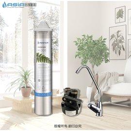 ~亞洲淨水~採用美國 Everpure H~300濾心含 QL3濾頭 含NSF無鉛鵝頸龍頭