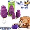 美國普立爾PREMIER~老犬用 ~ 松鼠搖搖 S~狗仔很忙智遊玩具系列