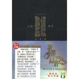聖經~祈禱應許版~特大字版•皮面金邊索引CAT1911 橫排聖經•祈禱應許版 國際漢語聖經