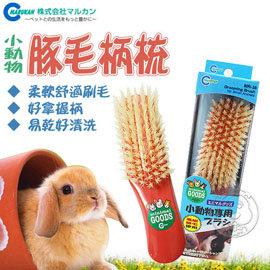 MARUKAN~小動物用增量白豚毛刷梳MR~36