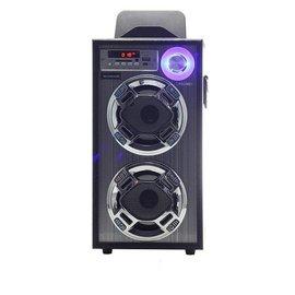 ◤具2組麥克風插座◢ WONDER 旺德 卡拉OK歡樂唱 USB/SD/MP3/FM 隨身音響 WS-P001