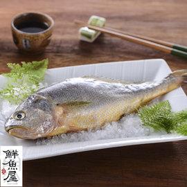 ~鮮魚屋~現流等級小黃魚^(黃花魚^)200g^~1