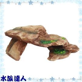 【水族達人】【裝飾品】TIAN RAN《烏龜島(紅大).25220LA》造景裝飾