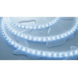 小棠照明館  舞光 3528低壓戶外LED軟條燈每綑5米/防水膠+3M背黏(須外購驅動器)商業空間/裝潢燈具
