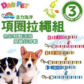 DAB PET~活力海洋 3分 項圈拉繩組 ^(3款顏色^)