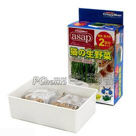 ~ CattyMan.貓生野菜,自己種貓草二回份盒裝,附培養土,簡單又健康,自己動手種最天