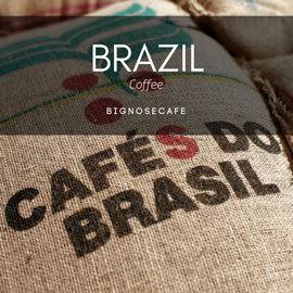 ~凸鼻子~巴西上選咖啡豆—COE季軍神木莊園^(半磅^) 225g