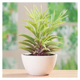 仿真綠植小樹盆栽套裝迷你小盆栽綠色植物假盆景餐桌花藝擺件