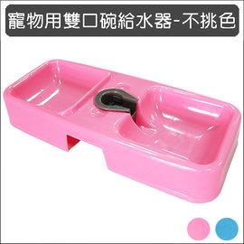 保羅叔叔寵物 館 ~ 寵物用雙口碗給水器 餵食皿 ~~ 不挑色