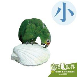 ~寵物鳥世界~ AMG0287 Amigo 阿迷購 美國帕麗 貝殼棲木^(小^)