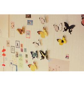 (15隻入)3D蝴蝶 壁貼   ◇立體蝴蝶貼紙 /客廳電視牆 臥室兒童房 沙發背景/壁貼/壁紙牆紙/牆角貼瓷磚貼/寵物店裝飾玻璃貼/櫥窗貼