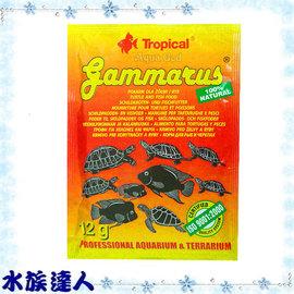 【水族達人】德比克Tropical《GAMMARUS高蛋白乾蝦飼料.12g》