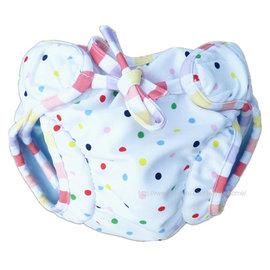 新品!嬰兒 寶寶 雙重保險防漏防尿三角泳裝 男女兒童卡通游泳褲 學習褲 彩虹圓點   B1