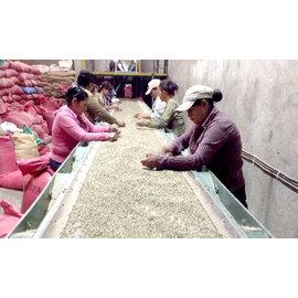 ~Coffeol Workshop~尼加拉瓜 安晶莊園 Paloma