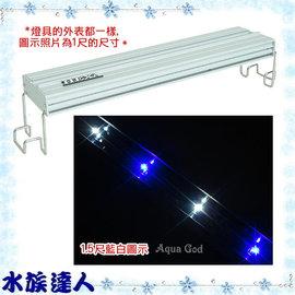 【水族達人】海薩 HEXA《450 大亮點 LED燈 (5W*4) 1.5尺/藍白》45cm 跨燈 41~49cm魚缸適用