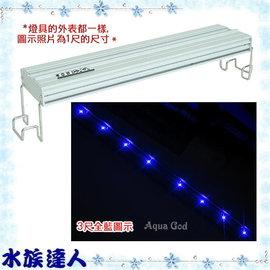 【水族達人】海薩 HEXA《900 大亮點 LED燈 (5W*8) 3尺/全藍》90cm 跨燈 86~94cm魚缸適用