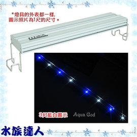 【水族達人】海薩 HEXA《900 大亮點 LED燈 (5W*8) 3尺/藍白》90cm 跨燈 86~94cm魚缸適用
