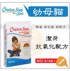 BABY貓舖 美國Chicken Soup~雞湯•幼母貓•潔牙抗氧化配方•15磅~ 217