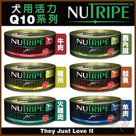 ~GOLD~ 紐西蘭 紐萃寶Q10強化系列 狗罐 ^(95g^~24罐組^)