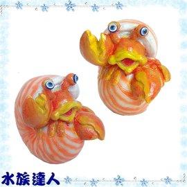 【水族達人】【飾品】海豚Dophin《寄居蟹.U-771》造景/裝飾/蝦/蟹