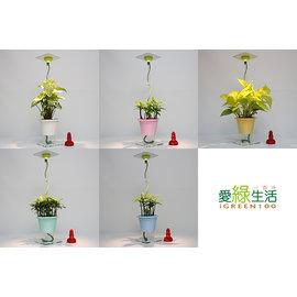 送禮看這裡~辦公療癒 居家風水 擺設 植物燈簡易款 馬卡龍節能LED植物燈