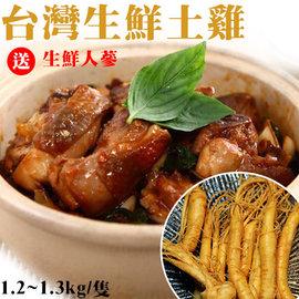 生鮮土雞 全雞去內臟 1.2k~1.3k 隻~送生鮮人蔘~家常料理 燉湯進補 節慶祭祀~陸