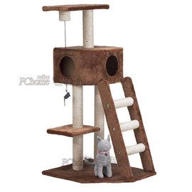 沛特高  ~0218 ~樓梯遊戲屋 三層可愛貓跳台