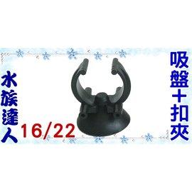 【水族達人】《吸盤+加溫器(石英管)扣夾.16/22.1入/組》超實用!