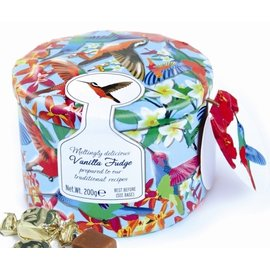 可愛蜂鳥彩繪糖果罐