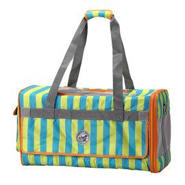 PARTY~FIVE輕量立體臘腸狗 寵物包 可側背 手提寵物包~藍綠直紋