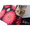 PARTY~FIVE兩件式網格寵物包 外出包 外出提包 手提側背寵物包 – 太陽花款