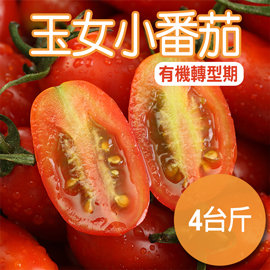 ~農夫家~溫室玉女小番茄,有機轉型期,4台斤
