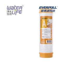 【淨水生活】《EVERPOLL 愛惠浦科技》【公司貨】道爾樹脂濾心 EVB-M100A