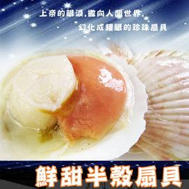 ^(特大^)鮮甜半殼扇貝^~~鼎鮮101海鮮 網~鱈魚 鮭魚 鯖魚 鱈場蟹腳 透抽 干貝