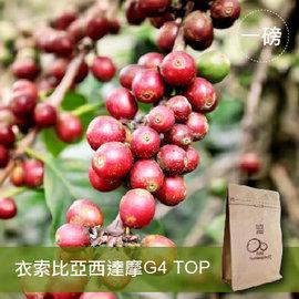 現烘~咖啡綠商號~衣索比亞西達摩G4 TOP咖啡豆^(一磅裝^)