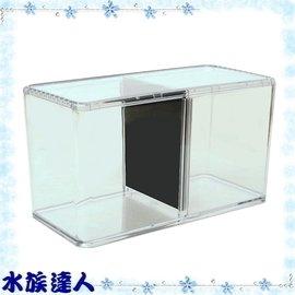 【水族達人】伊士達ISTA《雙層鬥魚盒 I-926 》鬥魚盒/鬥魚缸/高透明壓克力材質