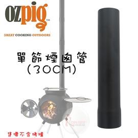 探險家戶外用品㊣13231903 澳大利亞OZPIG 直管煙囪 (單節) 長30cm 適用 黑皮豬燒烤爐 台灣製